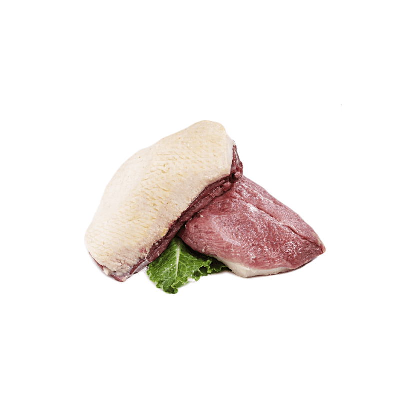 Duck fillet with skin